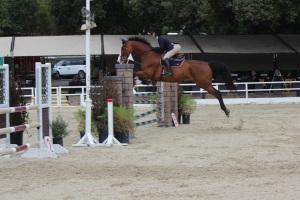 Dani & her horse, Celebrity.