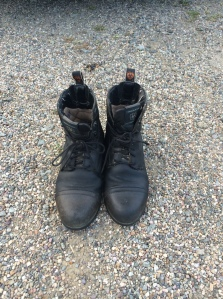 Paddock boots after cleaning.