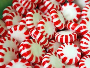 Peppermints are a tasty treat most horses love, and they will freshen your horse's hay breath at the same time!